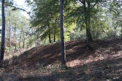 Camp Lawton Earthworks Photo, Click for full size