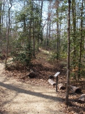 Cold Harbor Walking Trail Photo, Click for full size