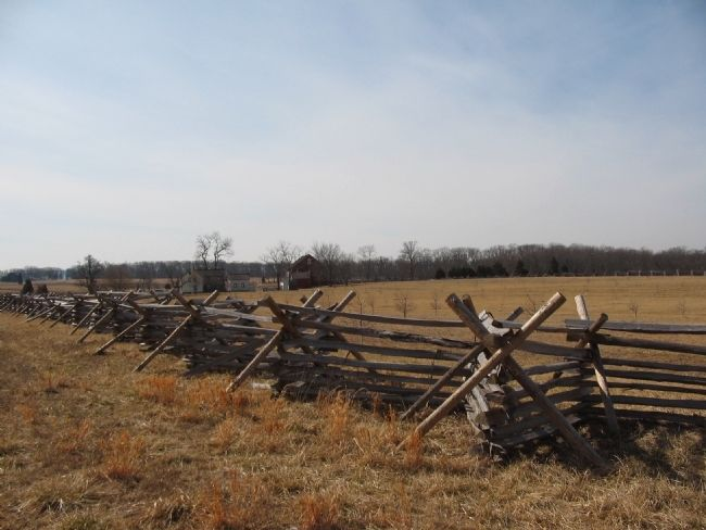 Fence Line image. Click for full size.
