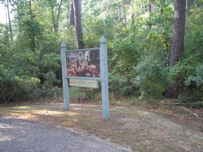 Marker on Jamestown Island image. Click for full size.