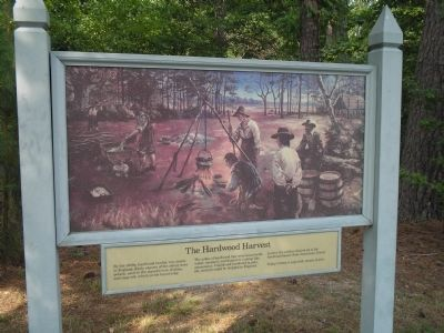 The Hardwood Harvest Marker image. Click for full size.