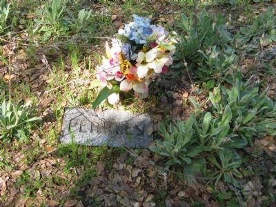 Pearley Monroe Grave Marker image. Click for full size.