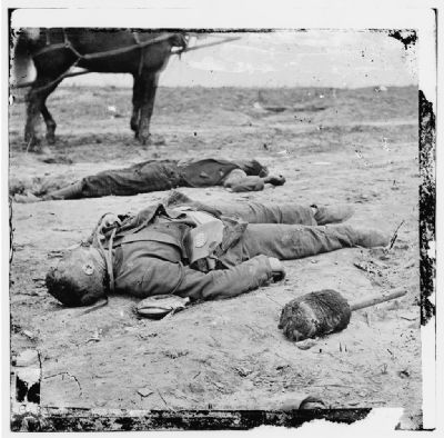 Confederate and Union dead side by side in the trenches at Fort Mahone. image. Click for full size.