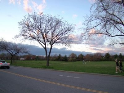 Dusk at West Potomac Park image. Click for full size.