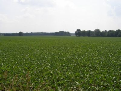Indian lands now growing corn Photo, Click for full size