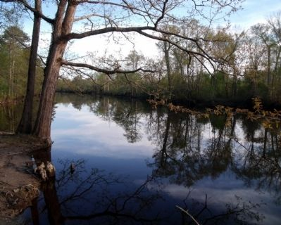 Blackwater River image. Click for full size.