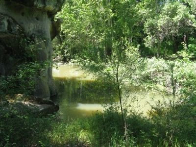 Uvas Creek image. Click for full size.
