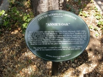 """Annie's Oak"" Marker Photo, Click for full size"