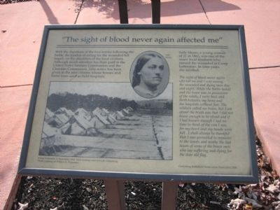 """The sight of blood never again affected me"" Marker image. Click for more information."