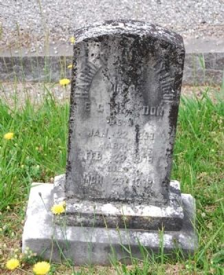 Harriet Henry Lythgoe&#39;s<br>Third Child of Augustus Lythgoe<br>Long Cane Cemetery, Abbeville, SC image. Click for full size.