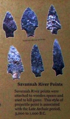 Savannah River points Photo, Click for full size