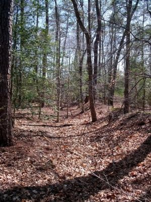 Confederate earthworks at Fussell's Mill. Photo, Click for full size