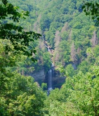 Raven Cliff Falls Photo, Click for full size