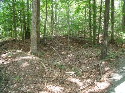 Nearby Confederate trenchline. image. Click for full size.