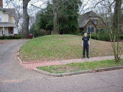 The remaining mound on Mound Street, Nacogdoches, TX image. Click for full size.