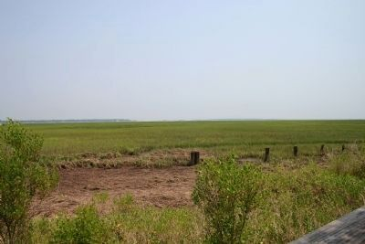 Today's Marshland in direction where Front light once stood, for Port Royal Sound image. Click for full size.