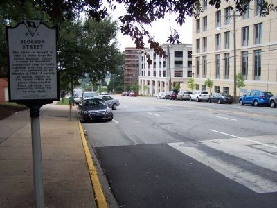 Blossom Street Marker, looking south along Main St. image. Click for full size.