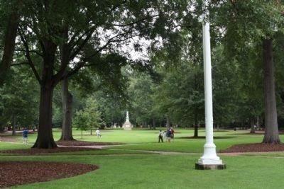 University of South Carolina Horseshoe green image. Click for full size.