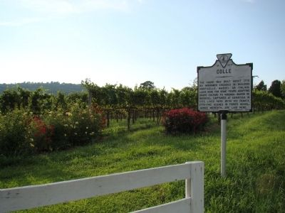 Colle Marker and Vineyard Photo, Click for full size
