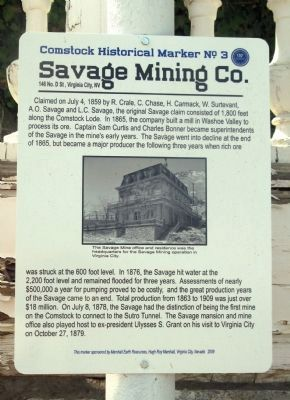Savage Mining Co. Marker Photo, Click for full size