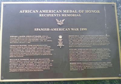 African American Medal of Honor Recipients Memorial, Marker Panel 7: image. Click for full size.