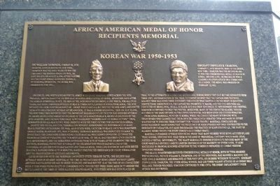 African American Medal of Honor Recipients Memorial, Marker Panel 11: image. Click for full size.