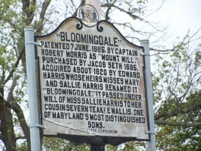 """Bloomingdale"" Marker image. Click for full size."