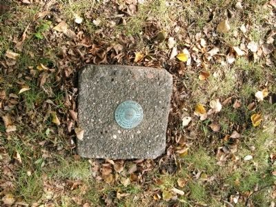 "South West Lawn - - Geodetic Survey ""Bench Mark"" Photo, Click for full size"