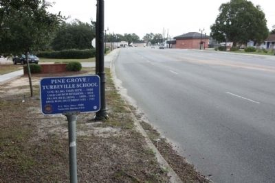 Pine Grove / Turbeville School Marker, looking north along Main Street image. Click for full size.