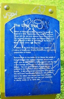 The Lime Tree Marker image. Click for full size.