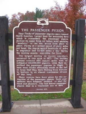 The Passenger Pigeon Marker image. Click for full size.