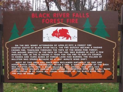 Black River Falls Forest Fire Marker image. Click for full size.