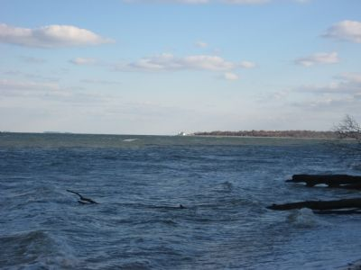 View of Cove Point Lighthouse image. Click for full size.
