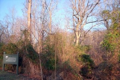 Mill Dam (overgrown mound in center) image. Click for full size.