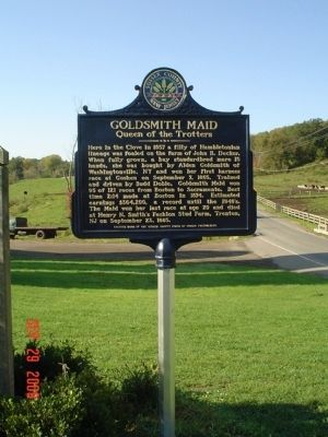 Goldsmith Maid Marker image. Click for full size.