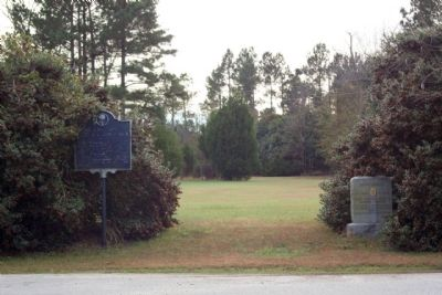 First Land Granted in Calhoun County Area Marker image. Click for full size.