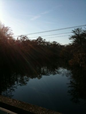 Black Mingo Creek image. Click for full size.