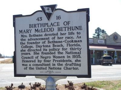Birthplace of Mary McLeod Bethune Marker, reverse side image. Click for full size.