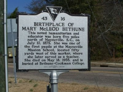 Birthplace of Mary McLeod Bethune Marker image. Click for full size.