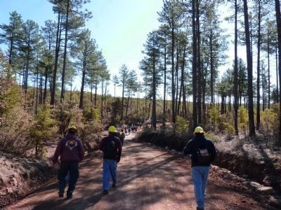 Attendees of a Dude Fire Staff Ride Walk Through Forest Remnants image. Click for full size.