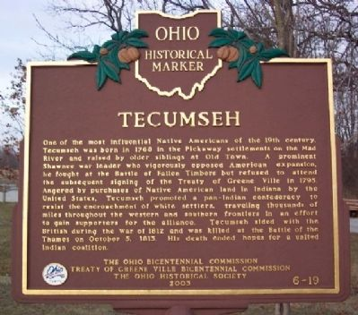 Tecumseh Marker (Side A) image. Click for full size.