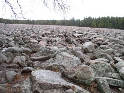 Hickory Run Boulder Field image. Click for full size.