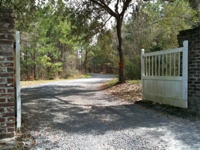Lewisfield Plantation Gate image. Click for full size.