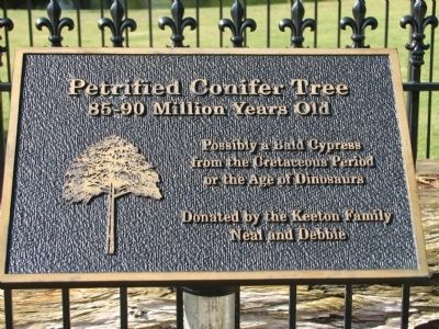 Petrified Conifer Tree Marker image. Click for full size.
