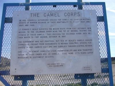 The Camel Corps Marker image. Click for full size.