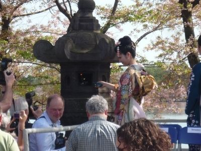 Japanese Stone Lantern - Annual Lighting Ceremony during the National Cherry Blossum Festival image. Click for full size.