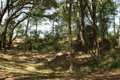 Confederate earthworks, as mentioned, part of Fort Lamar image. Click for full size.