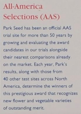 Park�s -<br>All-American Selections (AAS) image. Click for full size.