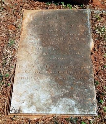 Frederick Gary Thomas Suber (1849-1852) Tombstone image. Click for full size.