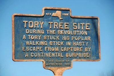 Tory Tree Site Marker image. Click for full size.